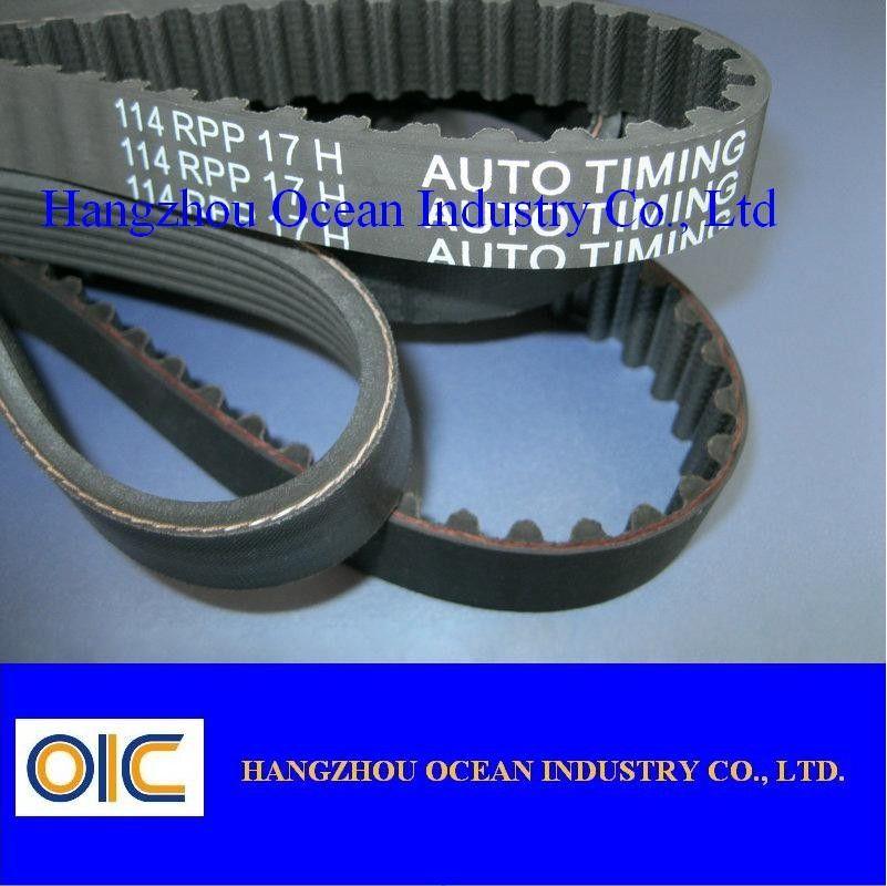 METRIC STANDARD 13X850 Replacement Belt